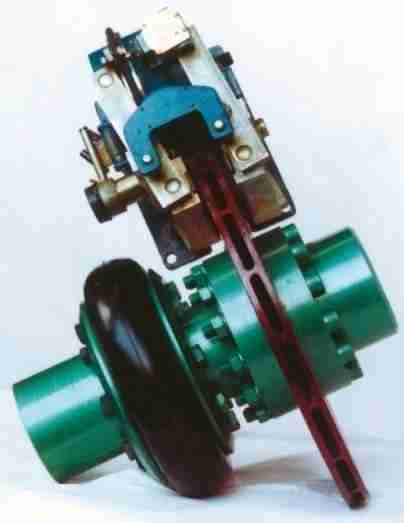 SHAFT COUPLING WITH BRAKE DISC - STROMAG PND
